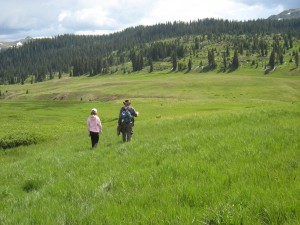 Photo - two hikers on a meadow at Elwood Pass, Colorado